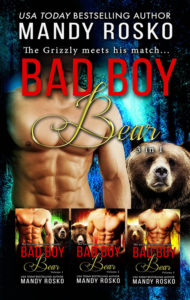 Book Cover: Bad Boy Bear