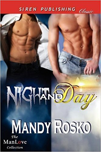 Book Cover: Night and Day